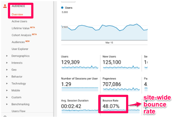 Example of overview report on Google Analytics